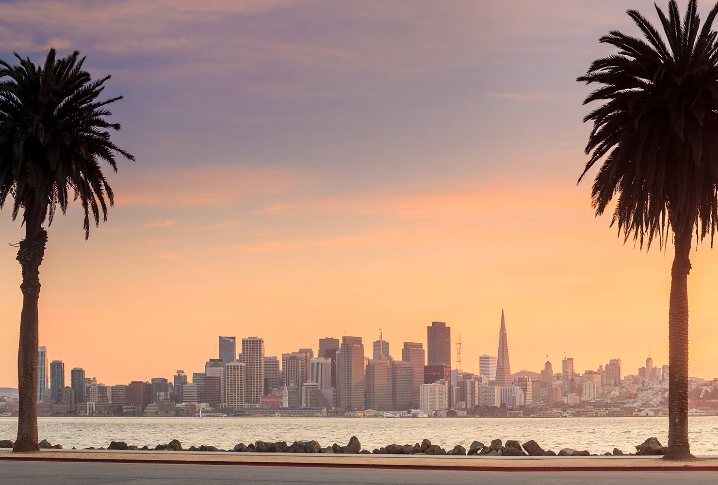 35 Picture Perfect Spots in San Francisco Shutterfly