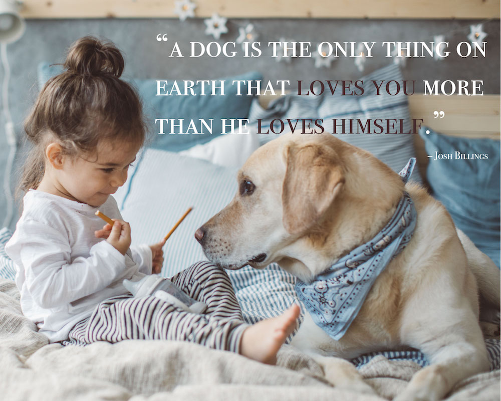 Cute Dog Quotes Love And Loyalty