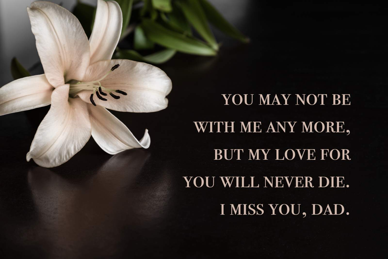 40+ Miss You Dad Quotes, Poems, and Messages | Shutterfly